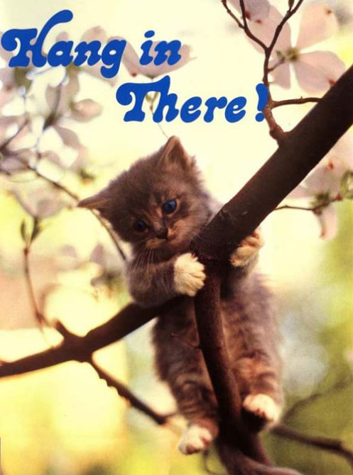 And if that doesn't work, here is a kitten on a motivational poster.